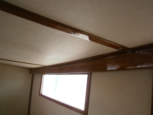 9 new ceiling