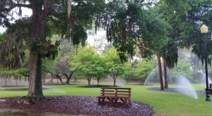 St Andres Park 2